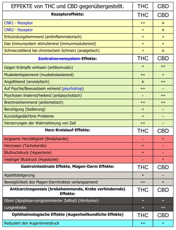 Effekte von THC und CBD gegenübergestellt