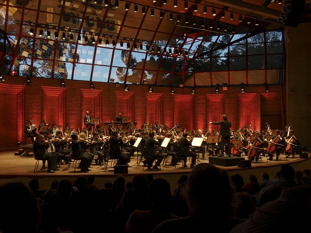 Orchester, Symphonie